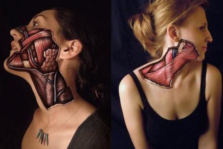 Pinturas anatómicas realistas revelan el funcionamiento interno de nuestrocuerpo