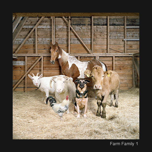 24+Farm+Family+1+copy